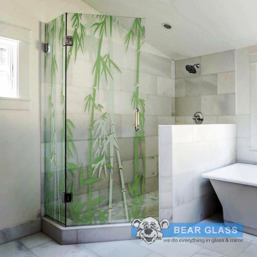 Custom Showerdoor